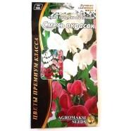 Насіння квітів Чину Суміш забарвлень, 0,3 г