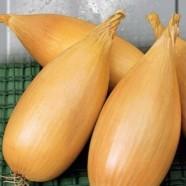 Семена лука Любчик, 100 г