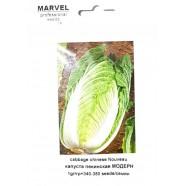 Семена капусты пекинская Модерн (Италия), 350 семян