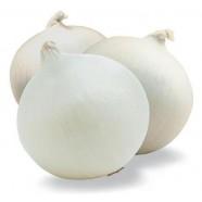 Семена лука репчатый Стерлинг F1 белый, (Италия), 0,2кг