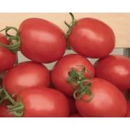 Насіння томату Беніто F1, детермінантний, 5гр.