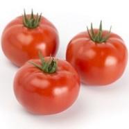 Насіння томату Сагатан F1, детермінантний, 2 500 шт.