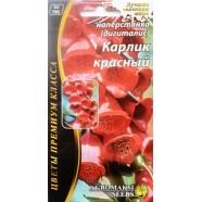 Семена цветов Наперстянка Карлик красный, 0,2г