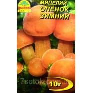 Міцелій гриба Опеньок Зимовий, 10г