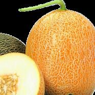 Семена дыни Карамель, 0,5кг