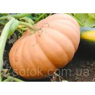 Насіння гарбуза мускатний вітамінний, 0,5 кг
