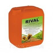 Регулятор роста растений Ривал, 5 л