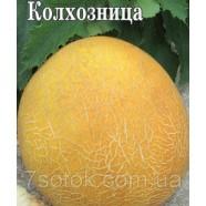 Насіння дині Колгоспниця, 0,5 кг