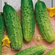 Семена огурца Хлебосольный F1, 0,5кг