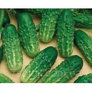 Семена огурца Нежинский, 100г