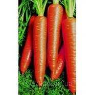 Семена моркови Вита Лонга, 1 кг