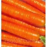 Семена моркови Осенний Король, 100г