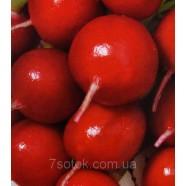 Семена редиса Заря, 1кг