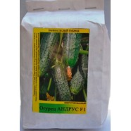 Семена огурца Андрус F1 , 0,5кг