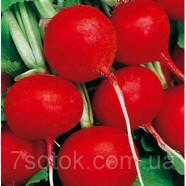 Семена редиса Рубин, 1кг