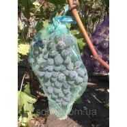 Сетка для защиты от ос и птиц гроздей винограда, размер 28*40 см, 5 кг