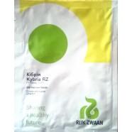 Насіння Огірка Кибрия F1, 250 насінин