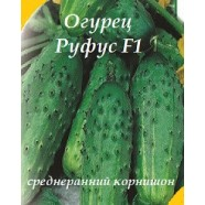 Семена огурца Руфус F1, 0,5кг