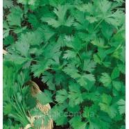 Семена петрушки Карнавал листовая, 0,5кг