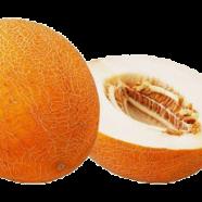 Семена дыни Берегиня, 0,5кг