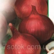 Семена лука Веселка красный, 0,5кг