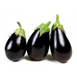 Професійні насіння Баклажана
