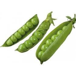 Професійні насіння Горохуі Квасолі