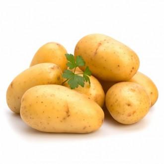 Семена пакетированные Картофеля