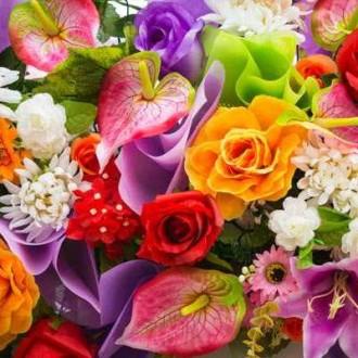 Професійні насіння квітів в банках