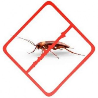 Средства от тараканов, прусаков, клопов, блох, муравьев
