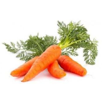 Семена моркови. Фасовка 100г
