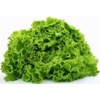 Насіння салату, зелені, пряних трав. Фасовка 100г