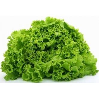 Семена салата, зелени, пряных трав. Фасовка 100г