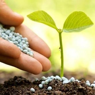 Удобрения, стимуляторы роста