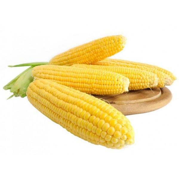 Насіння кукурудзи Багратіон F1, 20г