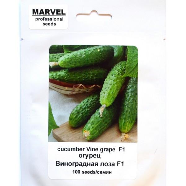 Насіння огірка бджолозапильний Виноградна лоза F1 (Росія), 100 насінин