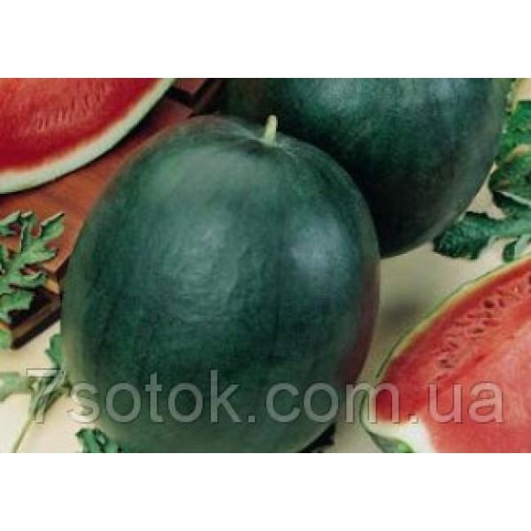 Семена арбуза Ярыло, 0,5кг