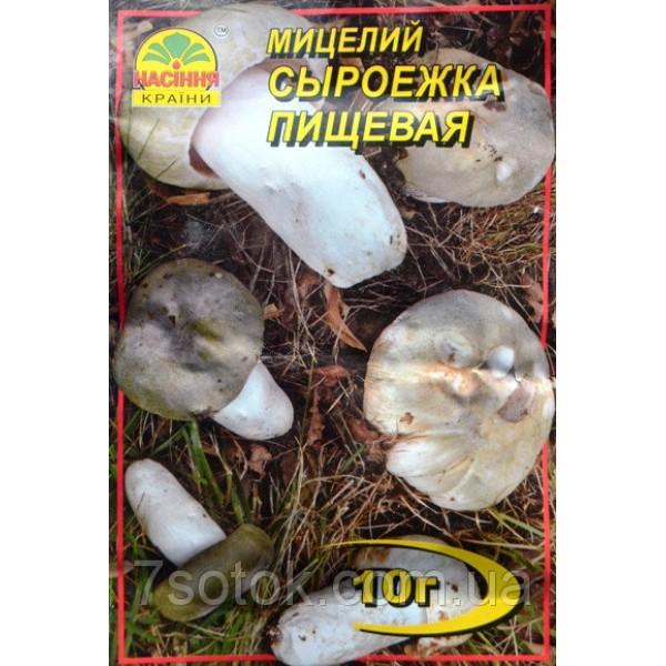 Міцелій гриба Сироїжка Харчова, 10 м