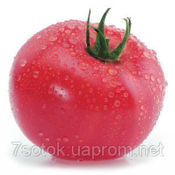 Насіння томату Торбей F1, 1000 насіння