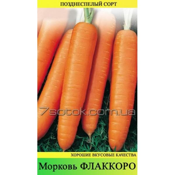 Насіння моркви Флаккоро, 1кг
