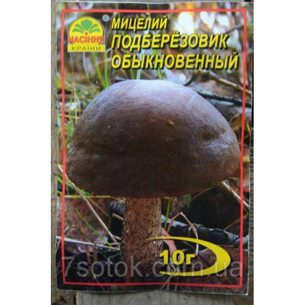 Міцелій гриба Підберезник звичайний, 10г