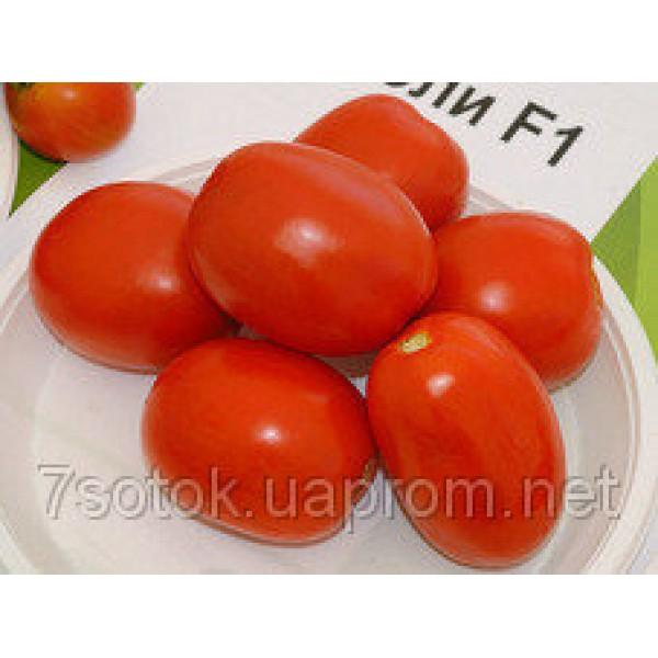 Насіння томату Чибли F1, 2500 насінин