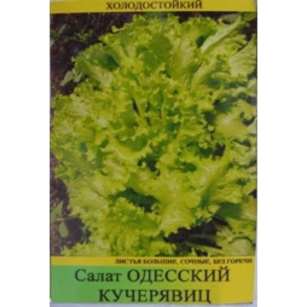 """Насіння салату """" Одеський Кучерявец, 0,5 кг"""