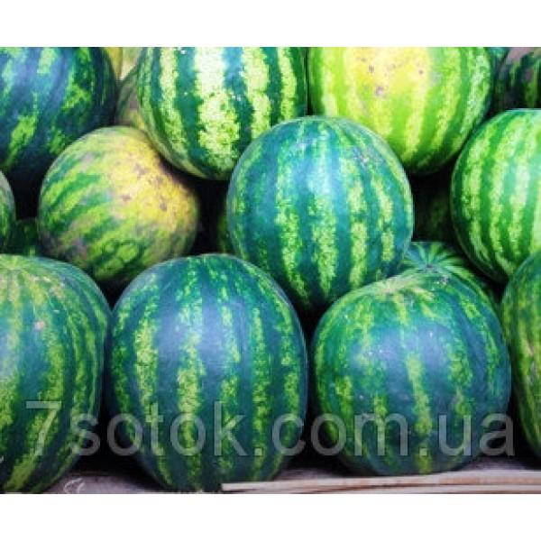Семена арбуза Спасский, 0,5кг