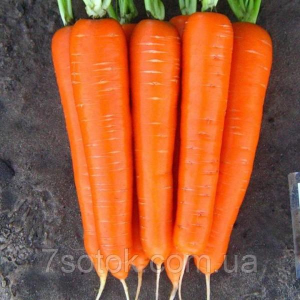 Насіння моркви Деликатесная, 100г