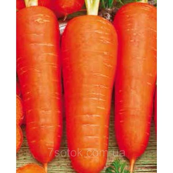 Насіння Моркви Вітамінчики, (Німеччина), 0,5 кг