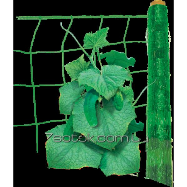 Сітка шпалерна огіркова, ширина 1,7 м, довжина 10м